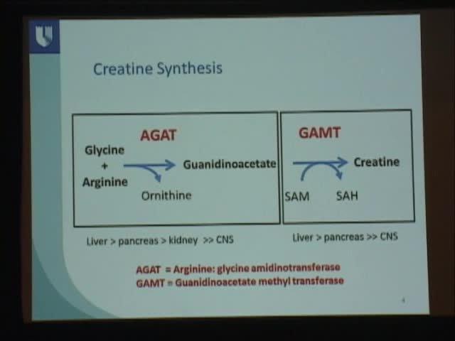 Diagnosing Creatine Deficiency Syndromes