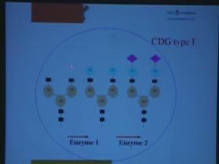 Update on Congenital Disorders of Glycosylation